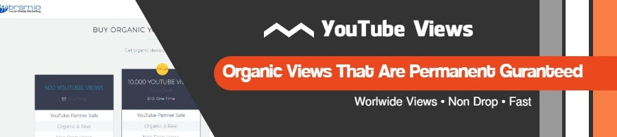 get organic YouTube views