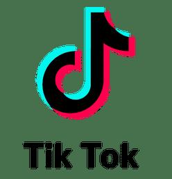 RealSocialz TikTok Services